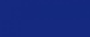 Лента ордена Белого Орла (10 х 200 см., шёлк, муар)