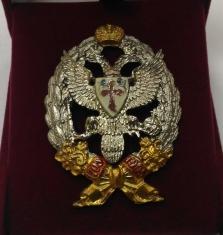 Знак 13-й Гусарский Нарвский полк