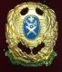 Знак 12-й пехотный Великолуцкий полк